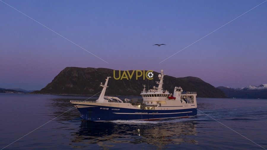 Havsnurp 636.jpg - Uavpic