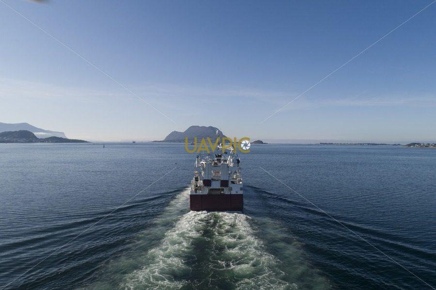 Havstål 239.jpg - Uavpic