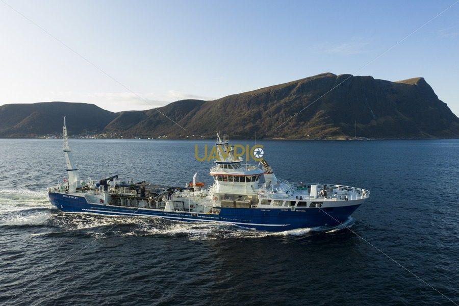 Aqua Kvaløy 841.jpg - Uavpic