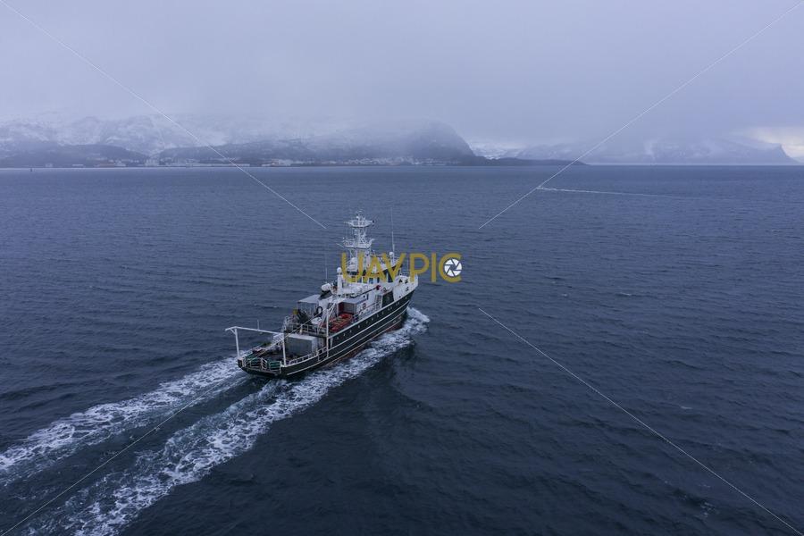 Kinfish 167.jpg - Uavpic