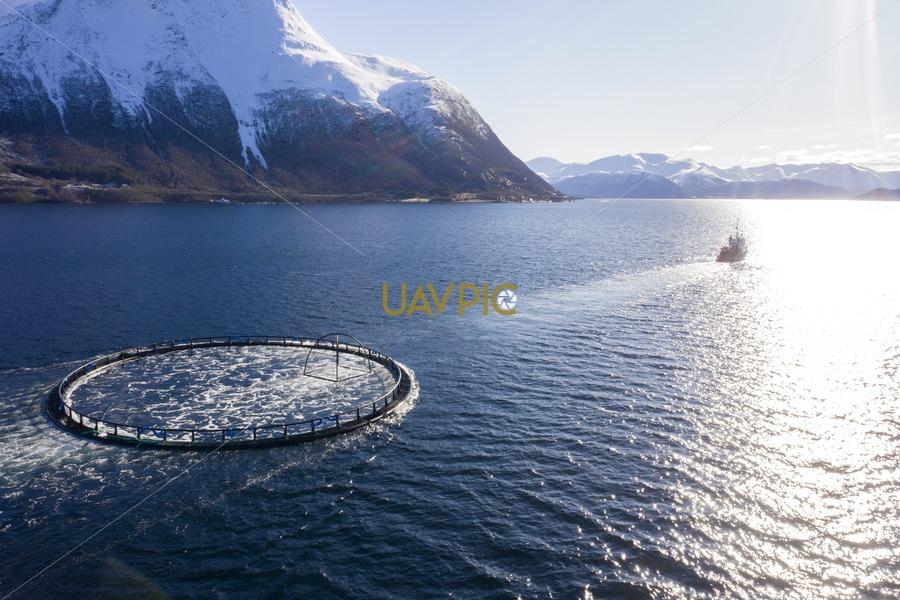 Polar Tug 541.jpg - Uavpic