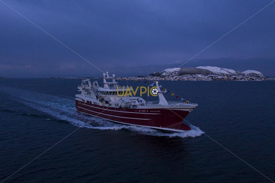 Havskjer 256.jpg - Uavpic
