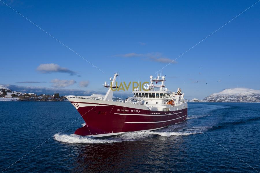 Havskjer 598.jpg - Uavpic