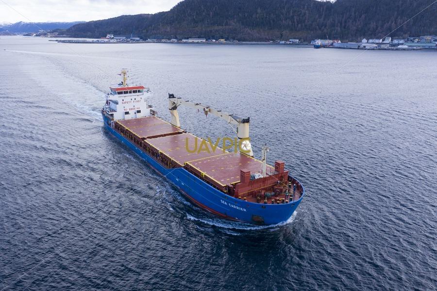 Sea Carrier 49.jpg - Uavpic